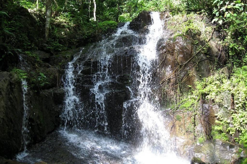Национальный парк као пра тэо (khao phra thaeo national park), пхукет. отзывы и фото