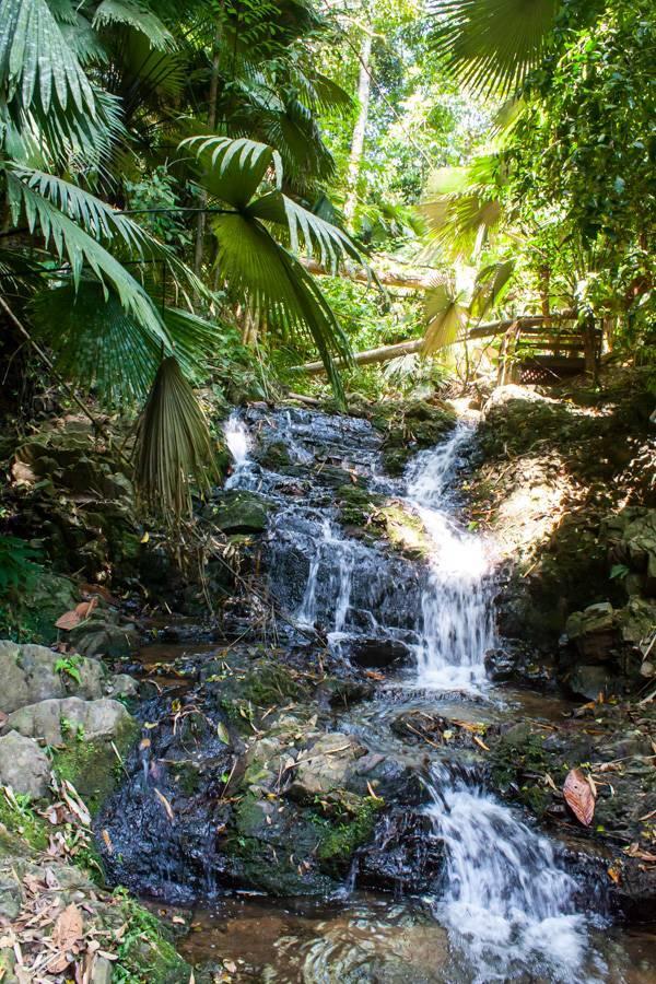 Водопад кату, банг пэ и тон сай - обзор достопримечательностей