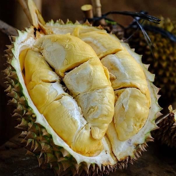 Удивительные и экзотические фрукты таиланда