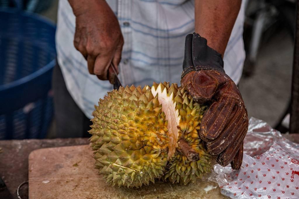 Дуриан (фрукт): полезные свойства, отзывы, фото. как едят дуриан? :: syl.ru