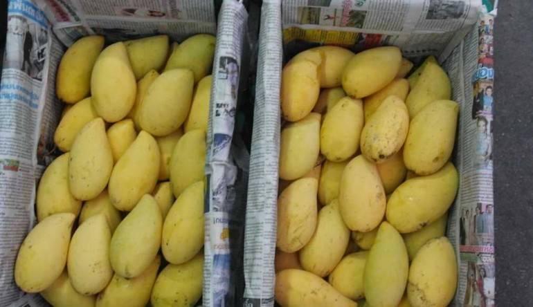 Как вывезти фрукты из тайланда