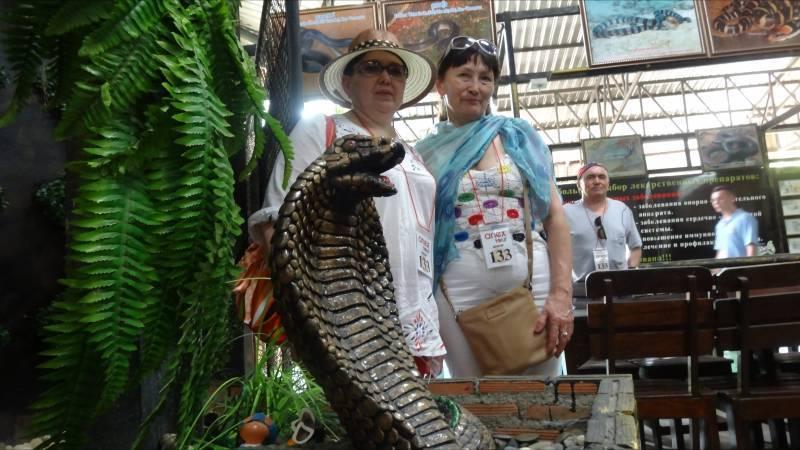 Змеи таиланда с фото и названиями - ядовитые и опасные, зелёные, морские, на пхукете и в паттайе