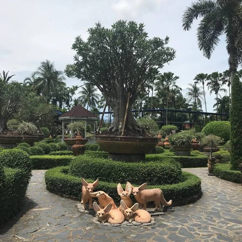 Тропический парк нонг нуч в паттайе, таиланд: фото, видео, отзывы - 2021