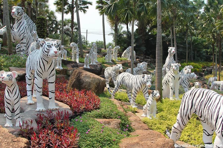Тропический парк нонг нуч (паттайя): описание, фото, время работы, как добраться • вся планета