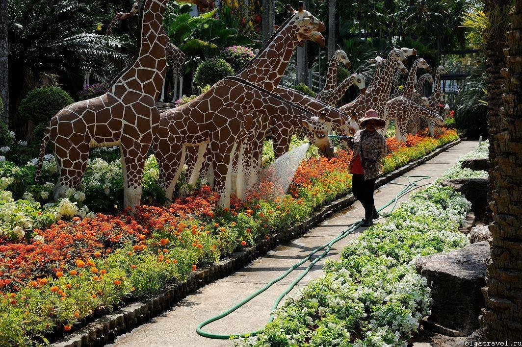 Нонг нуч – тропический сад в паттайе. таиланд