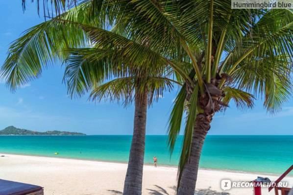 Лучшие отели на самуи c собственным пляжем
