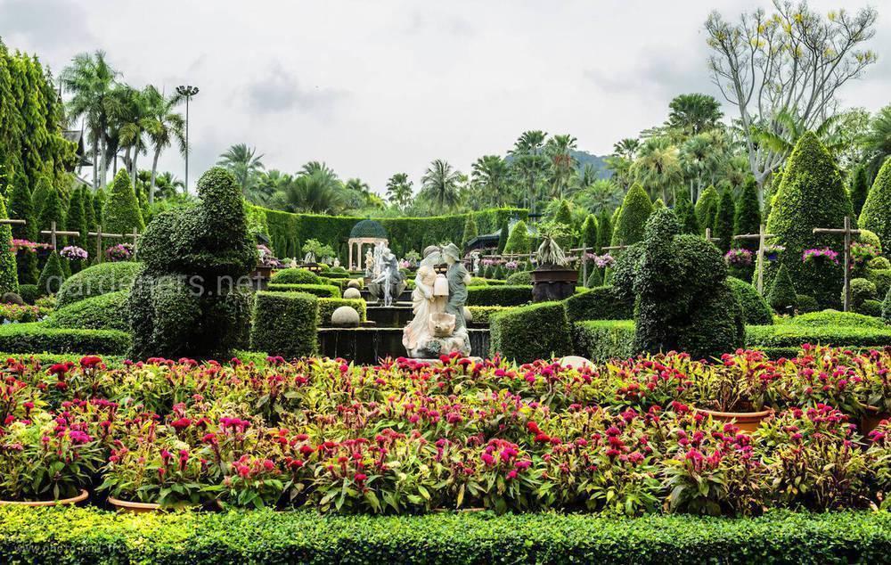 Тропический сад нонг нуч в паттайе: фото, как добраться