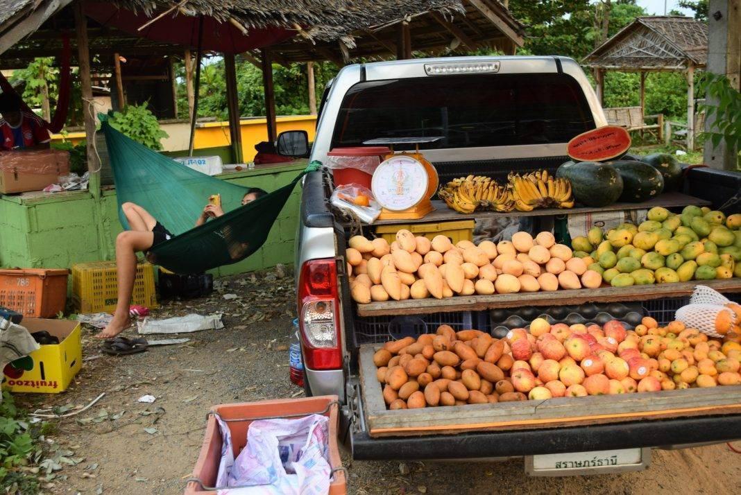 Как привезти фрукты из тайланда