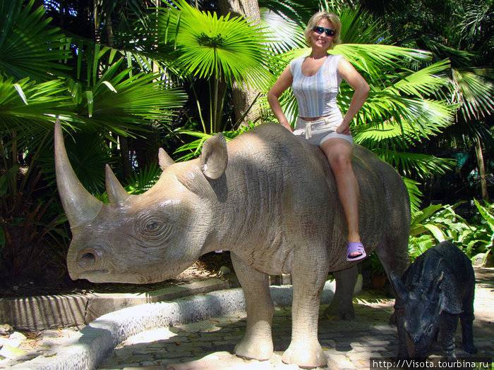 Зоопарк на пхукете: как добраться, развлечения
