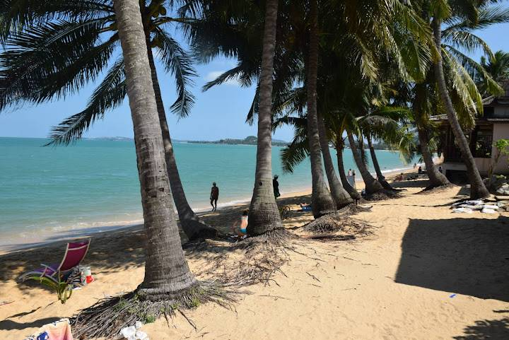 Топ 5 лучших пляжей на самуи где лучше всего купаться
