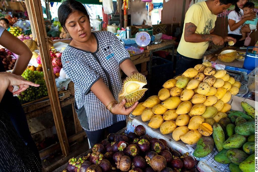 Что нельзя вывозить из тайланда в россию – полный список 2019