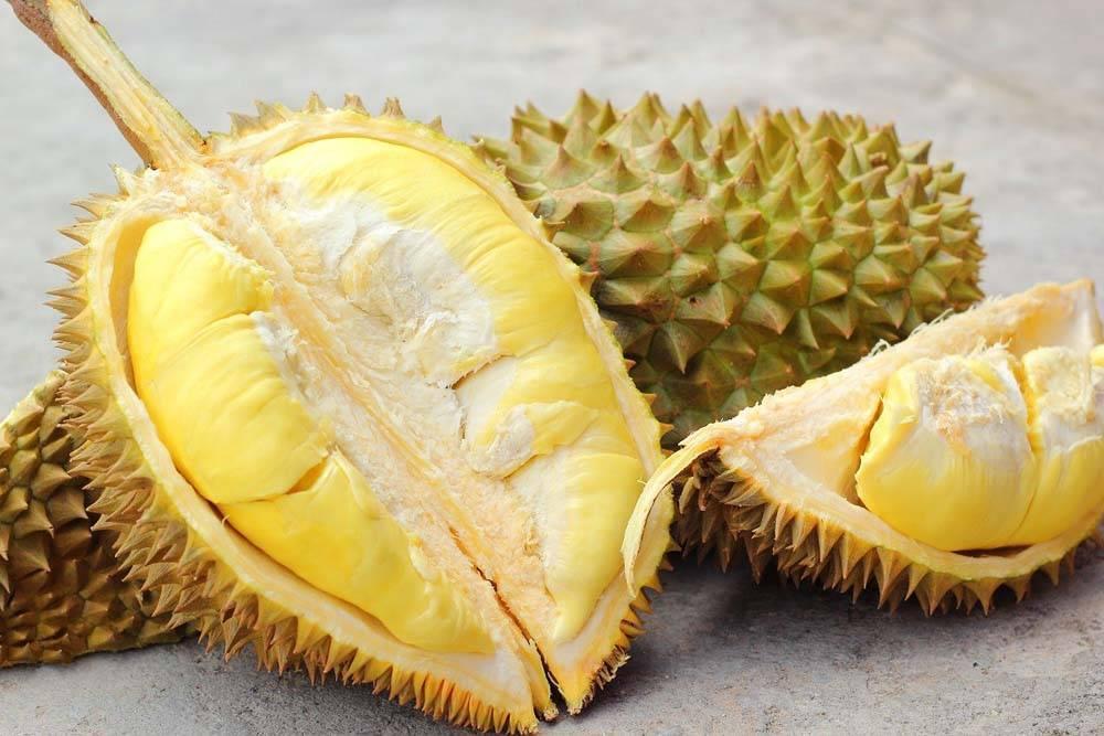 Дуриан фрукт: фото, чем пахнет, вкус, свойства