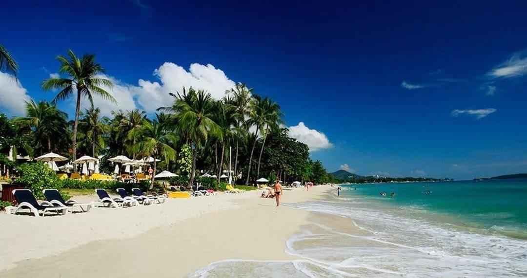 Топ пляжей самуи. отели 4, 5 звезд с собственным пляжем. пляжи для отдыха с детьми.