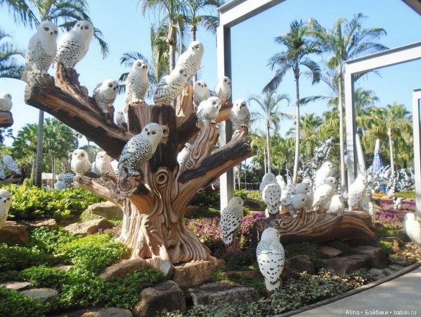 """Тропический парк """"нонг нуч"""" в паттайе на карте, отзывы туристов"""